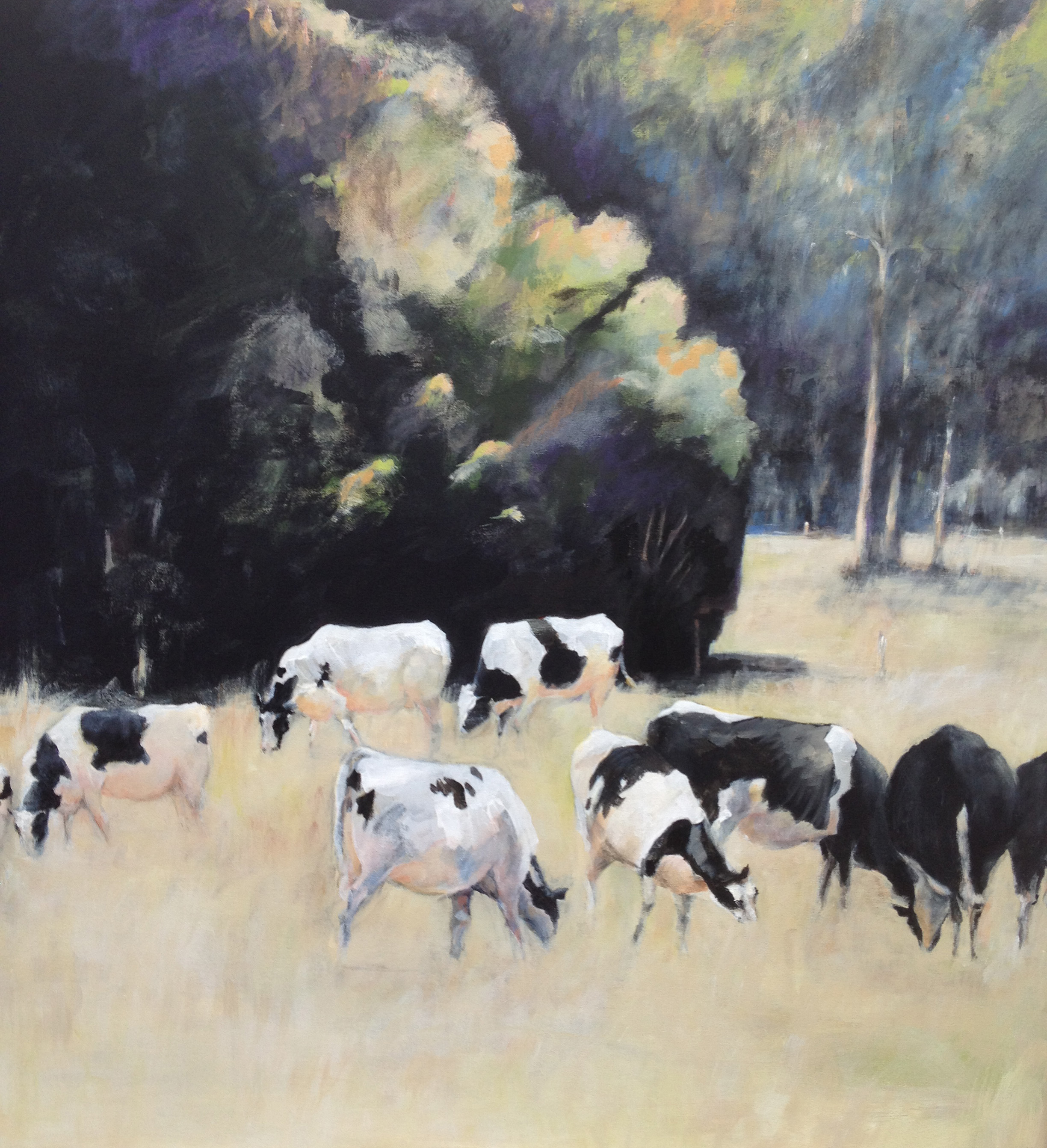 Sue Boettcher South Australian Contemporary Artist living in Adelaide